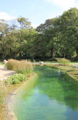 Luxury self-catering with natural swimming pool in Cornwall