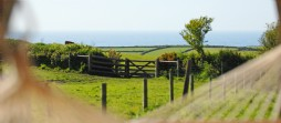 Romantic self-catering holiday cottage near Boscastle